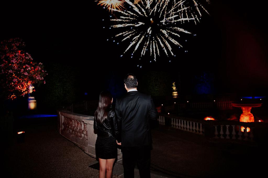 Proposal in Paris Castle Fireworks